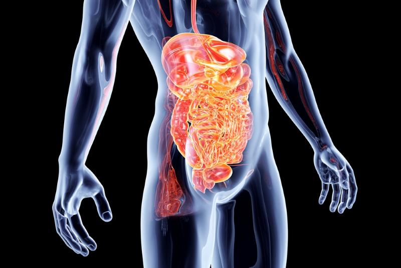 Народное средство для борьбы с внутренним ядом: повторяю курс 3 раза в год, никакая инфекция меня не берет