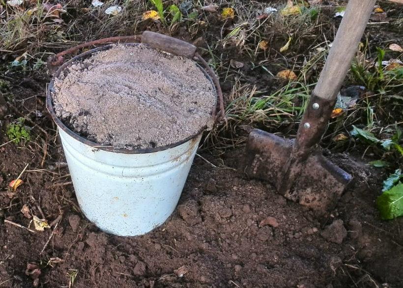 Белорусский способ выращивания огурцов в открытом грунте