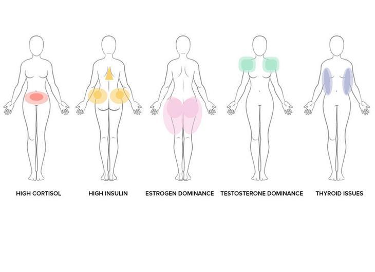 гормоны не дают похудеть